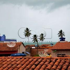 Chuva sobre telhados