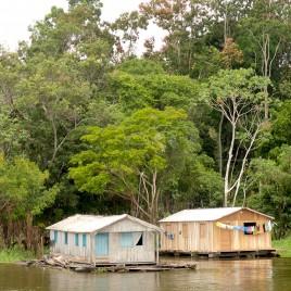 Casas sobre balsas às margens do Rio Negro