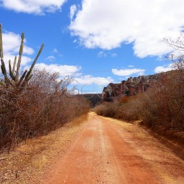 Estrada dentro do P. N. Serra da Capivara