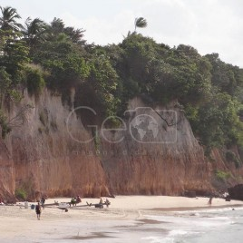 Falésia – Timbau do Sul (RN)