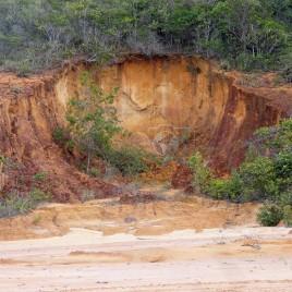 Erosão e Assoreamento