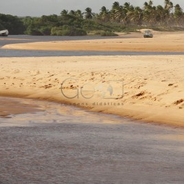 Cordão arenoso na Praia de Subaúma