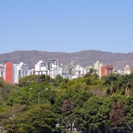 Área verde com prédios ao fundo