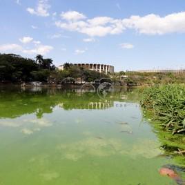 Eutrofização – Lagoa da Pampulha