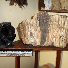 Hulha – Carvão Mineral