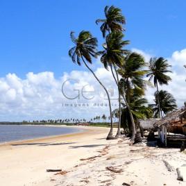 Praia com coqueiros – Marcação, PB