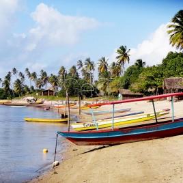 Barcos atracados na beira do Rio