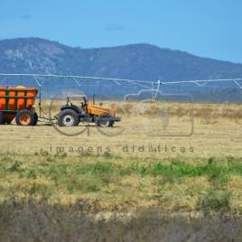 Projeto de Irrigação Várzeas de Sousa