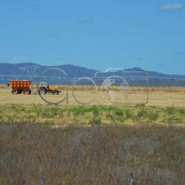 Projeto de Irrigação Várzeas de Sousa, PB