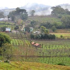 Zona Rural – Parreiras