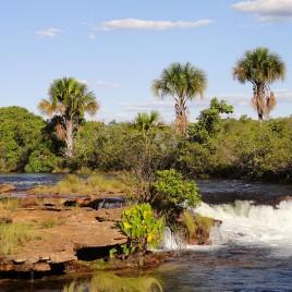 Mata Cilar – Parque Estadual do Jalapão, TO