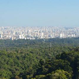 Serra da Cantareira e São Paulo ao fundo