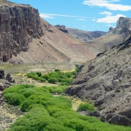 Canyon Rio Pinturas