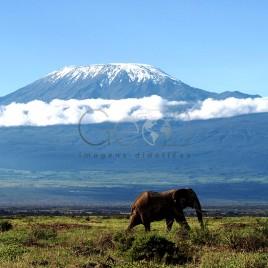 Parque Nacional de Amboseli
