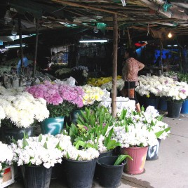 Comércio de Flores