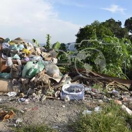 Lixo – Mairiporã (SP)