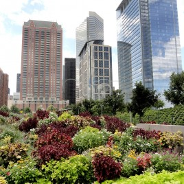 Jardim Urbano – Houston (EUA)