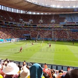 Jogo no Estádio Mané Garrincha – Brasília