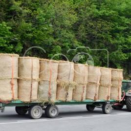 Reboque carregando Feno – Veytaux, Suíça