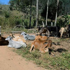 Área Rural, Sabinópolis (MG)