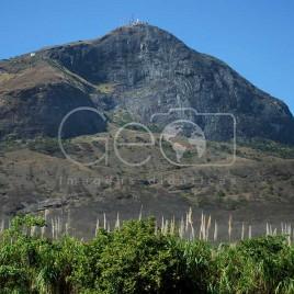Vegetação e Pico da Ibituruna (MG)