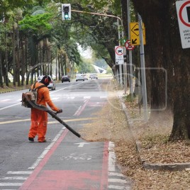 Poluição Sonora – São Paulo (SP)
