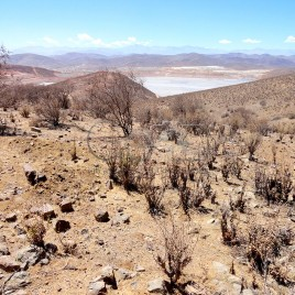 Região de Extração de Minérios – Andacollo
