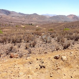 Clima Desértico – Andacollo, Chile