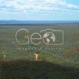 Região dominada pela Caatinga (PI)