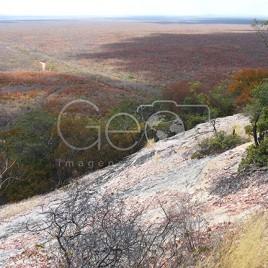 Região dominada pela Caatinga