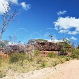 Rua de terra em meio a caatinga – Guaribas (PI)