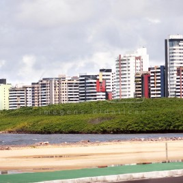 Manguezal com prédios ao fundo (SE)