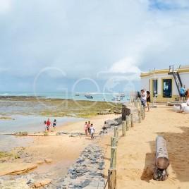 Projeto Tamar na Praia do Forte (BA)