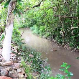 Rio Embu-Guaçu (SP)