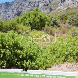 Table Mountain em Cidade do Cabo