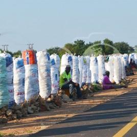 Vendedores de carvão em Moçambique