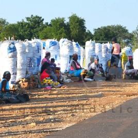 Vendedoras de carvão em Moçambique